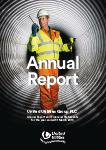 Download annual Report &amp Accounts